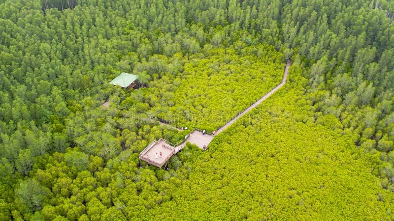 Vista aerea della cinghia del forcone di Thung, Rayong, Tailandia immagine stock libera da diritti