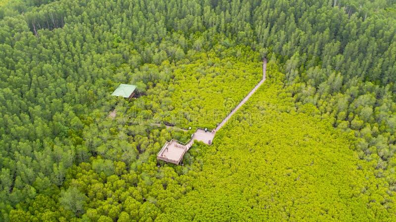 Vista aerea della cinghia del forcone di Thung, Rayong, Tailandia fotografia stock