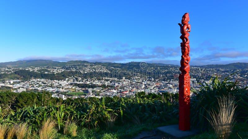 Vista aerea della città di Wellington immagini stock libere da diritti