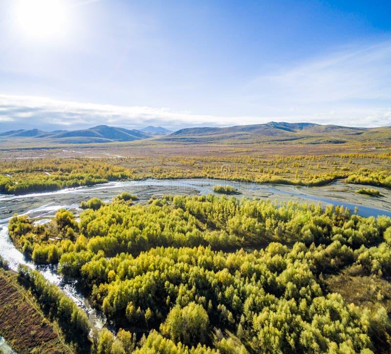 Vista aerea della foresta nell'Estremo Oriente, Russia immagini stock