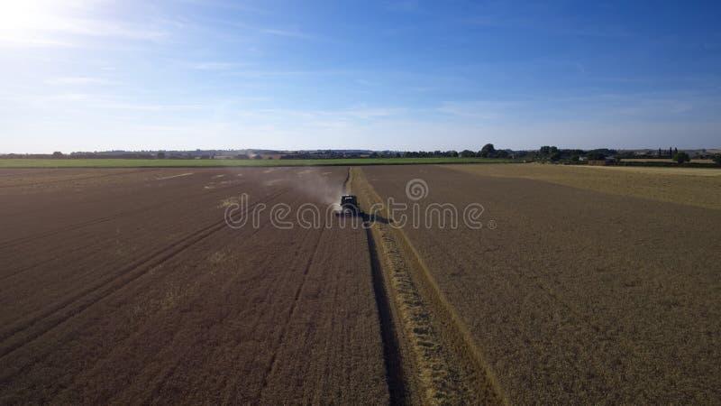 Vista aerea della mietitrebbiatrice che lavora nel giacimento di grano fotografie stock