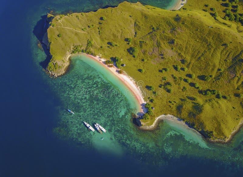 Vista aerea della spiaggia rosa, vicino all'isola Indonesia del Flores immagine stock