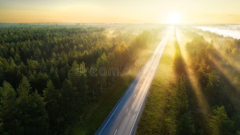 Vista aerea della strada nella bella foresta di estate ad alba in Finlandia immagine stock libera da diritti