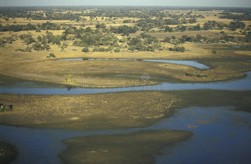 Vista aerea, delta di Okavango, Botswana fotografie stock