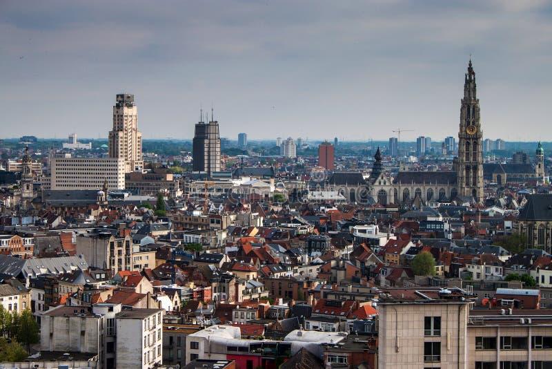 Vista aerea di Anversa fotografia stock libera da diritti