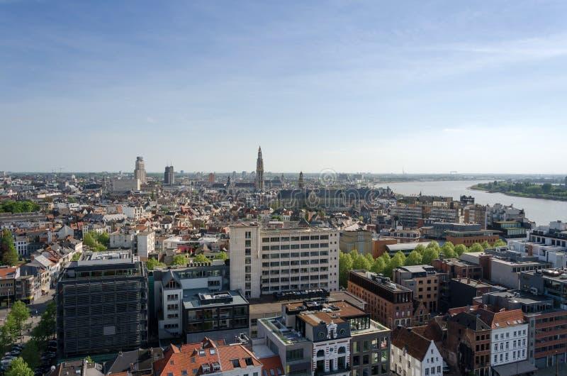 Vista aerea di Anversa, Belgio immagini stock