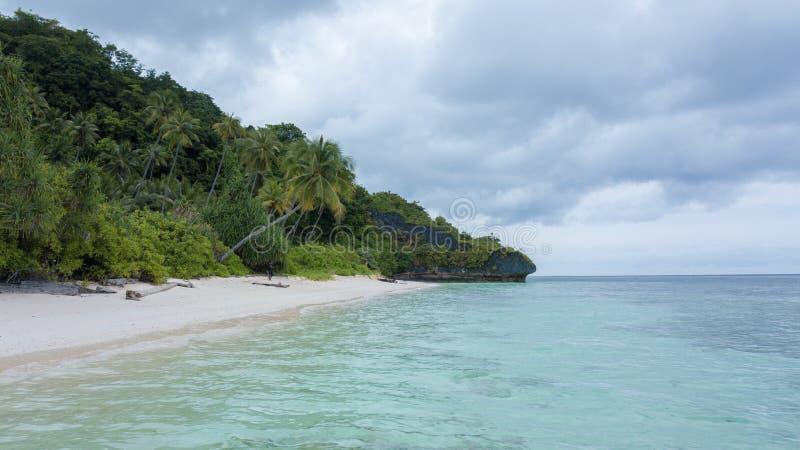 Vista aerea di bella e spiaggia pulita accanto all'oceano blu con il cielo piacevole immagini stock
