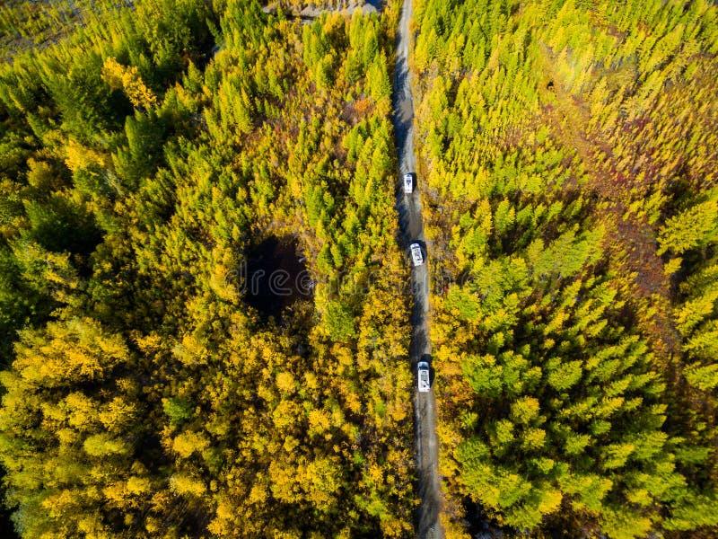 Vista aerea di guida di veicoli attraverso la foresta sulla strada campestre La Russia fotografie stock libere da diritti
