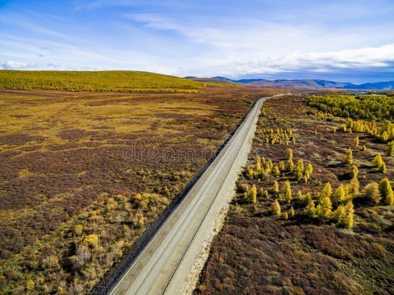 Vista aerea di guida di veicoli attraverso la foresta sulla strada campestre La Russia fotografia stock libera da diritti