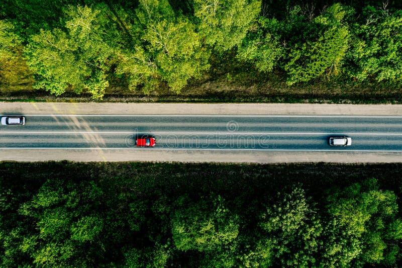 Vista aerea di guida di veicoli attraverso la foresta sulla strada campestre fotografia stock