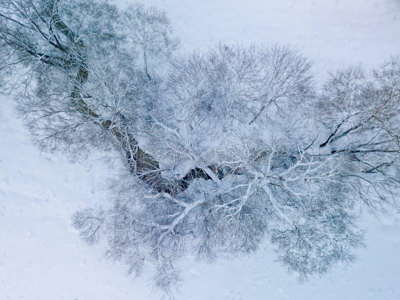 Vista aerea di piccolo fiume nel giorno di inverno fotografia stock