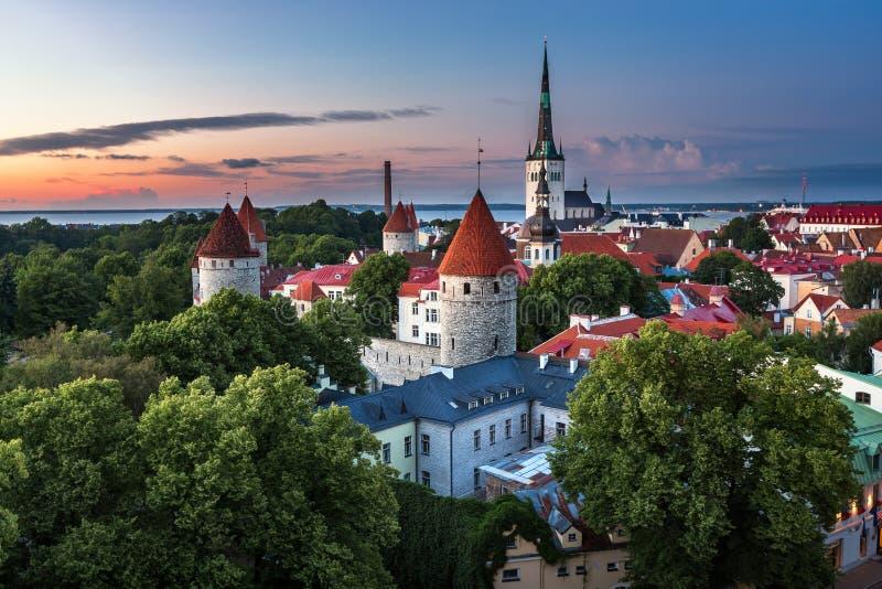 Vista aerea di Tallinn Città Vecchia dalla collina di Toompea nella sera fotografia stock
