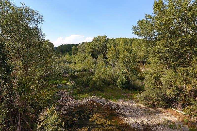 Vista aerea di un incrocio di fiume una foresta fotografie stock