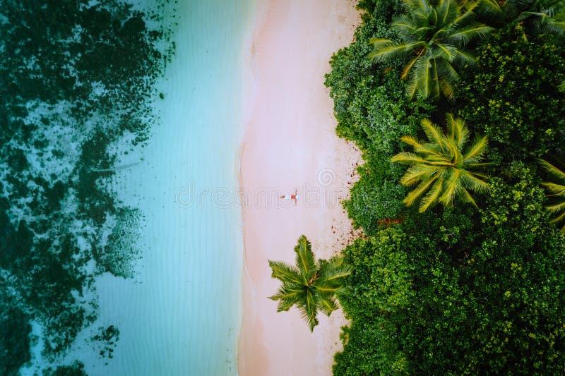 Vista aerea di una giovane donna che si rilassa sulla spiaggia sabbiosa di paradiso tropicale circondata dalle palme e cristallin fotografia stock