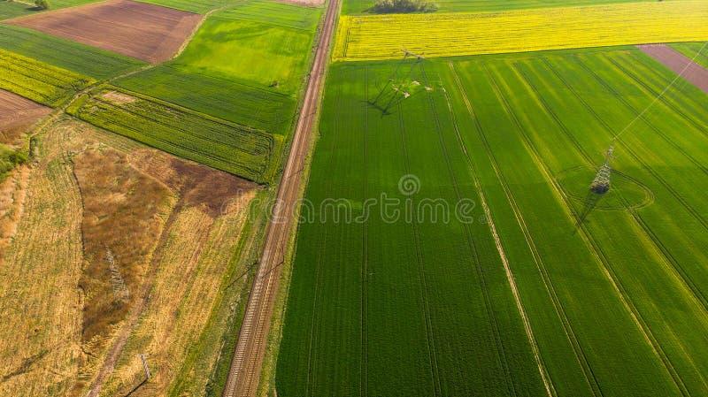 Vista aerea di una terra con i campi verdi seminati in campagna nel giorno di primavera fotografia stock