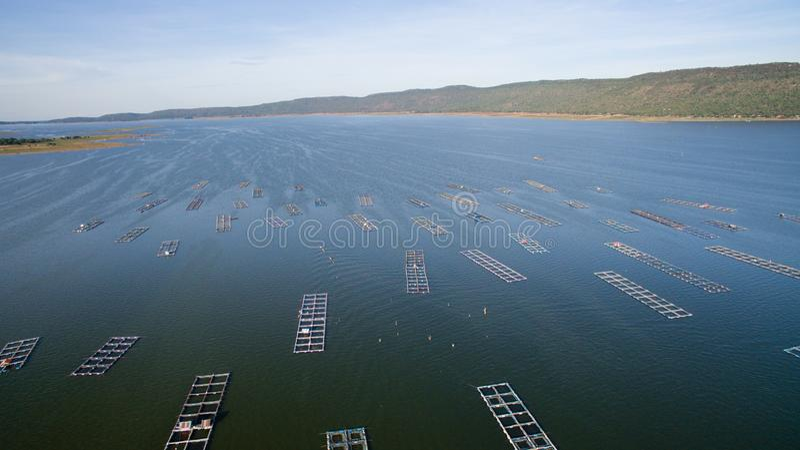Vista aerea, gabbia del pesce, gabbie del pesce, Khonkean, Tailandia fotografie stock libere da diritti
