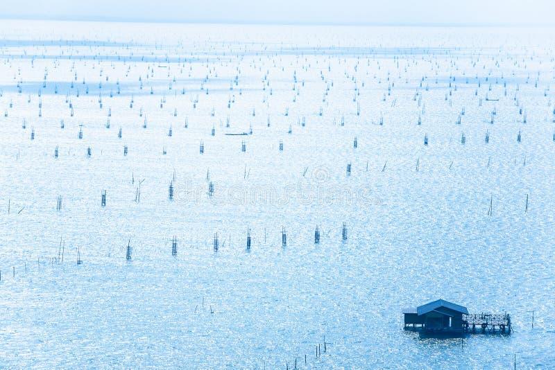 Vista aerea, molta trappola tradizionale del pesce, casa di galleggiamento di legno e pescatore sul peschereccio nel lago Songkhl fotografie stock libere da diritti