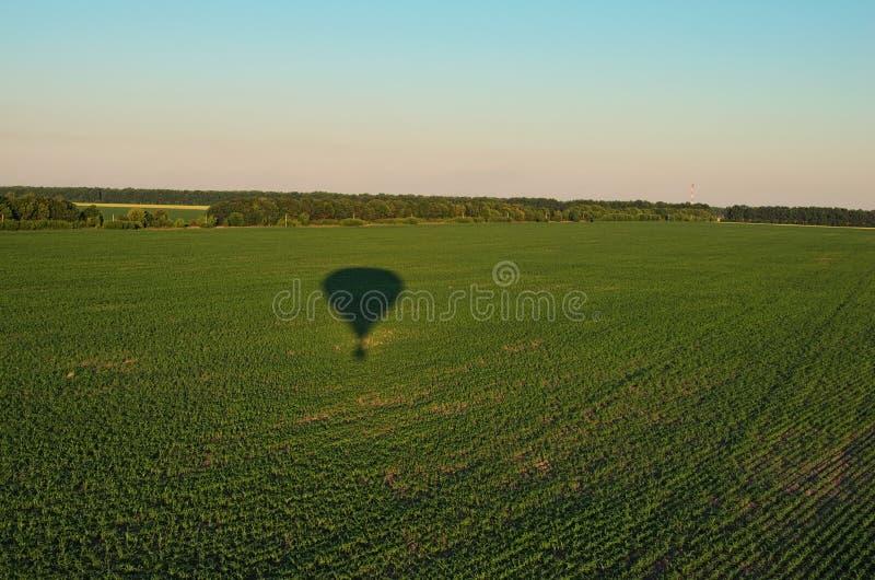 Vista aerea sopra i campi agricoli un giorno di estate soleggiato Ombra dell'aerostato sulle piante verdi Regione di Kyiv, Ucrain fotografia stock libera da diritti