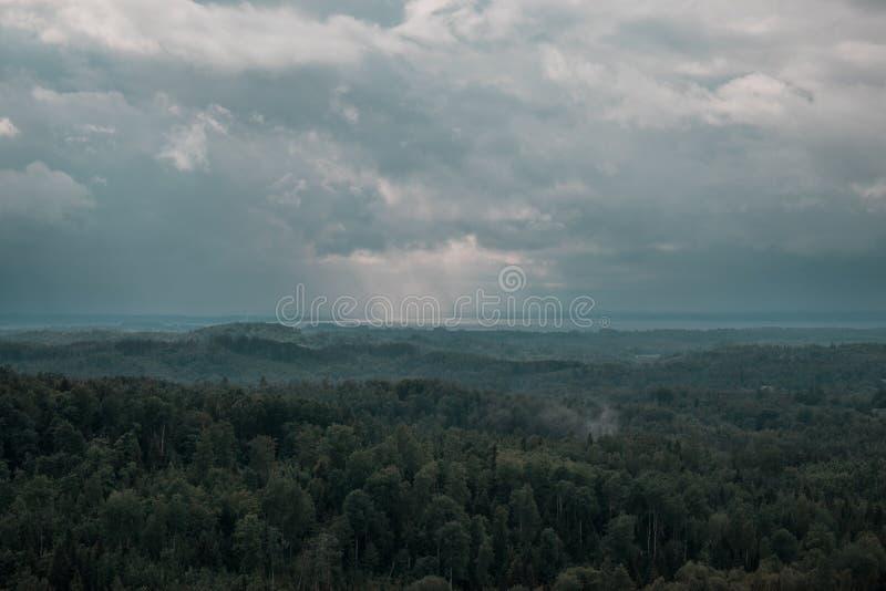 Vista aerea sopra la foresta verde nella sera Mistero nuvoloso Paesaggi della Lettonia fotografie stock
