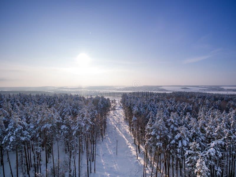 Vista aerea sulla foresta e sul campo di inverno Giorno soleggiato in precipitazioni nevose, fiocchi di neve sui sunlights Lago e fotografia stock libera da diritti