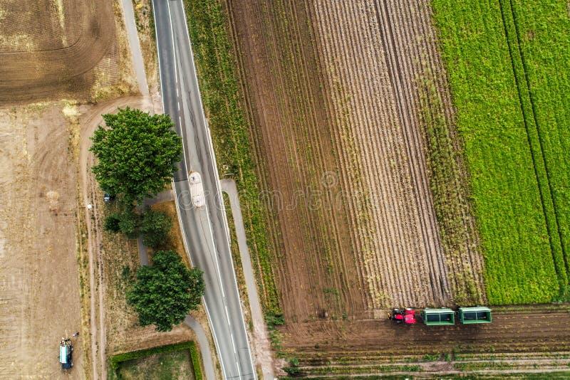 Vista aerea verticale astratta di una strada campestre stretta al bordo di un'area di terreno arabile con differenti bande colora fotografia stock libera da diritti