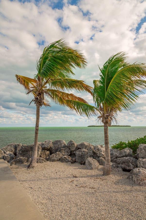 Vista al mar con las palmeras y rocas y nubes hermosas imagen de archivo libre de regalías
