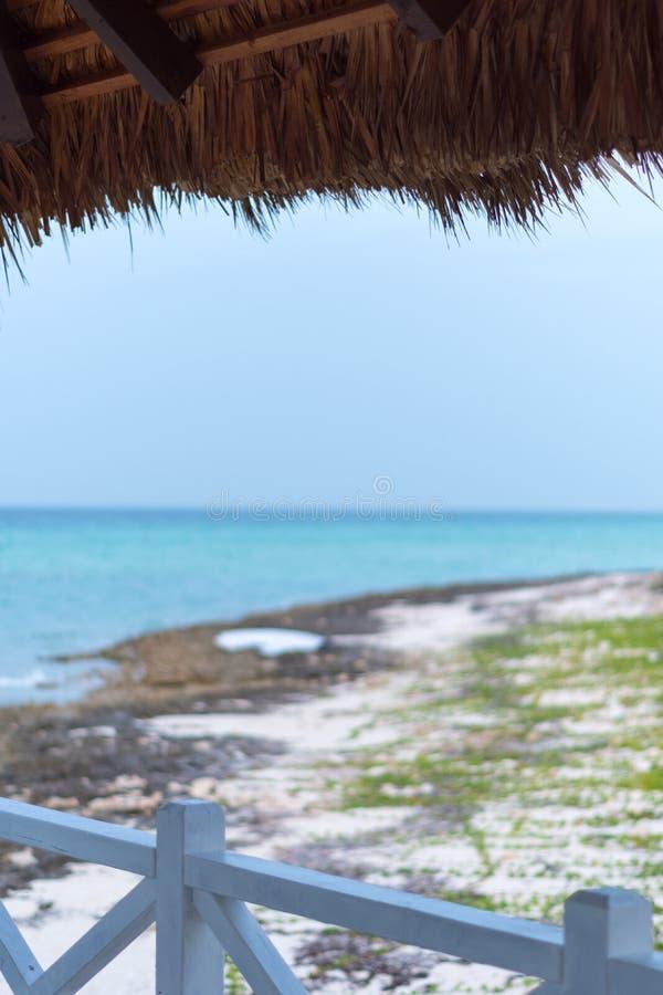 Vista al mar del refugio de la licencia de la palma, Cayo Guillermo, Cuba imágenes de archivo libres de regalías