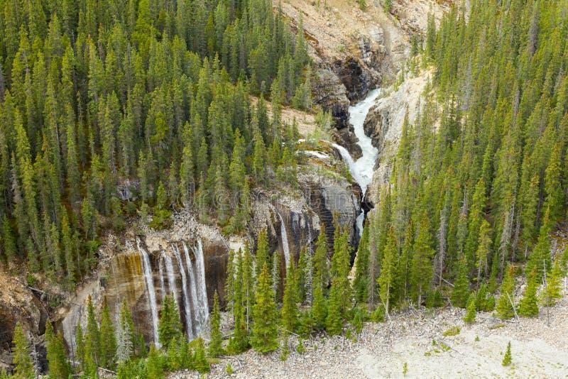 Vista alberta Canada di cadute del fiume di Athabasca fotografia stock