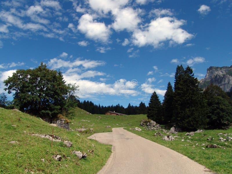Vista alpina imagem de stock royalty free