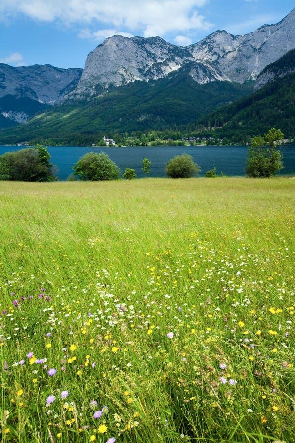 Vista alpina del lago di estate fotografia stock libera da diritti
