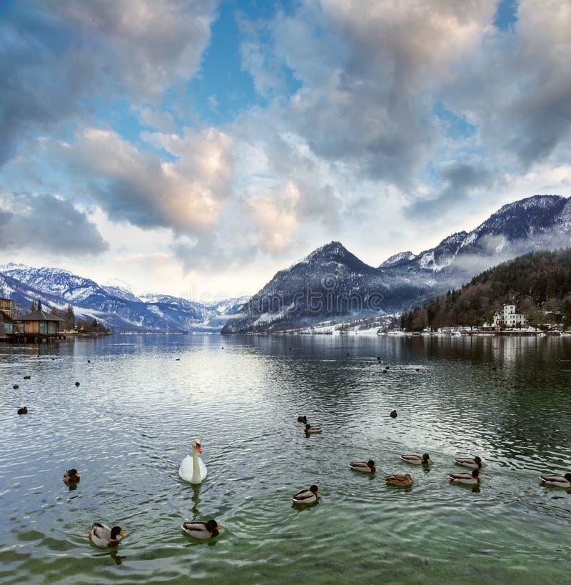 Vista alpina del lago di inverno immagine stock