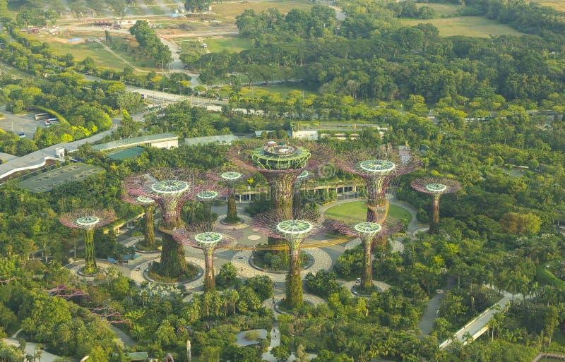 Vista alta botânica do jardim pela baía imagem de stock royalty free