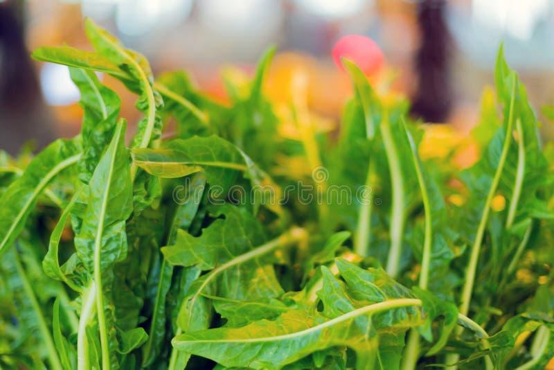 Vista alta vicina della foglia verde su fondo arancio vago con lo spazio della copia usando come piante verdi naturali del fondo immagini stock libere da diritti