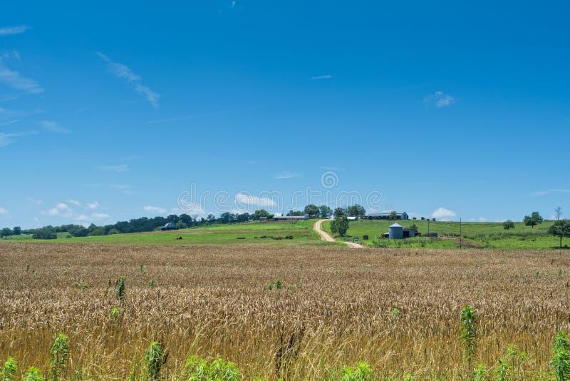 Vista amplia de las tierras de labrantío de Missouri imagen de archivo libre de regalías