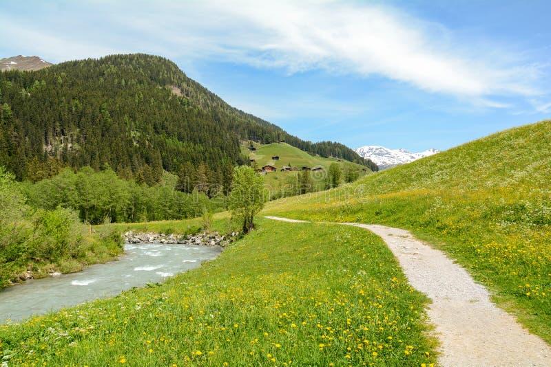 Vista ao vale de Tuxertal com rio de Tux e cumes de Zillertal perto da vila Juns e à geleira no verão, Tirol Áustria Europa de Hi fotografia de stock royalty free