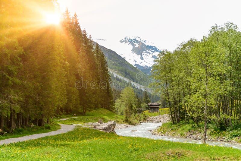 Vista ao vale de Tuxertal com rio de Tux e cumes de Zillertal perto da vila Juns e à geleira no verão, Tirol Áustria Europa de Hi foto de stock royalty free