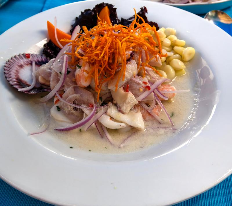 Vista ascendente cercana a Ceviche, plato peruano tradicional imágenes de archivo libres de regalías