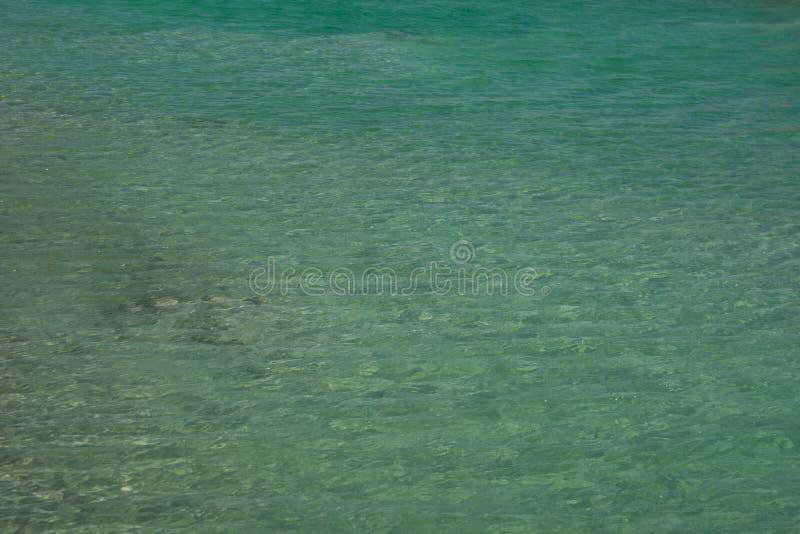 Vista ascendente cercana de los cristales de la sal y de la formación mineral en la orilla del mar muerto en el cuidado de Israel foto de archivo libre de regalías