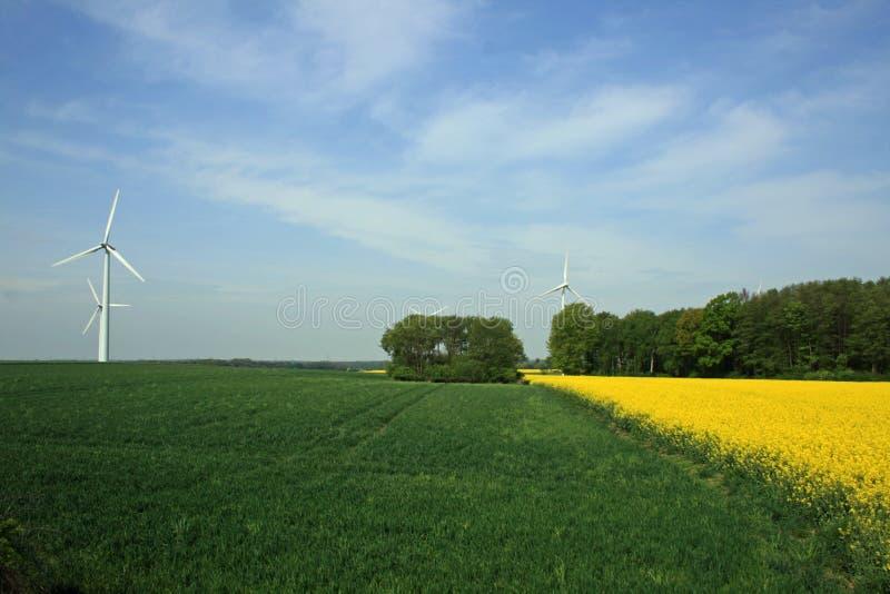 Vista ascendente di una turbina di vento immagini stock libere da diritti
