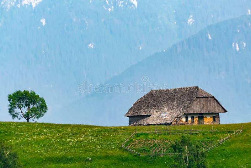 Vista ascendente próxima de uma casa de madeira do sheepfold sobre uma montanha coberta com os pastos verdes Paisagem da mola com fotos de stock royalty free