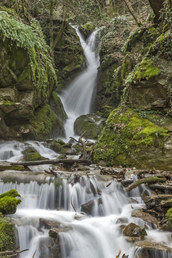 Vista asombrosa de la cascada de Leshnishki en el bosque profundo, montaña de Belasitsa fotos de archivo
