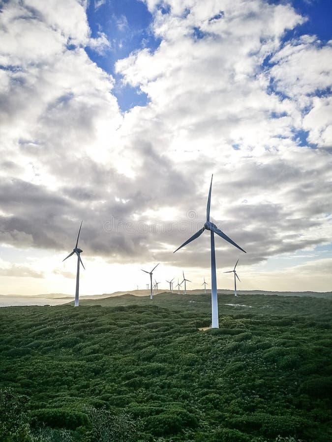 Vista asombrosa de las turbinas de viento en el parque eólico, Albany fotos de archivo