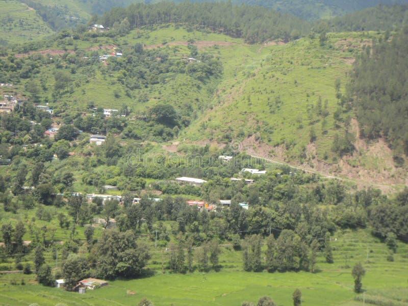 Vista atractiva del lugar verdoso cerca de Mansehra, Paquistán fotografía de archivo