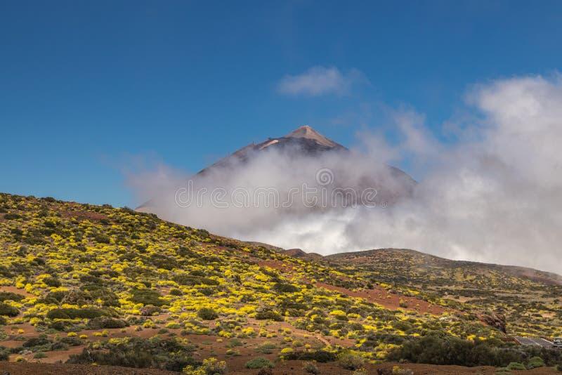 Vista através das nuvens à parte superior do vulcão de Teide no dia ensolarado brilhante Céu azul claro e nuvens macias brancas B imagens de stock royalty free