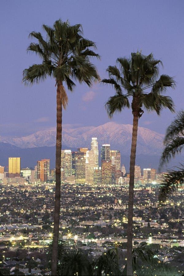 Vista através das palmeiras da skyline de Los Angeles imagem de stock royalty free