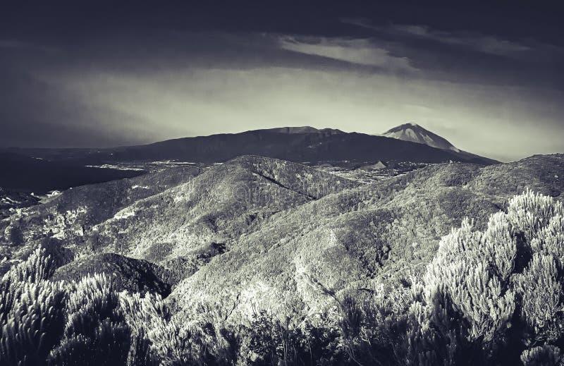 Vista in bianco e nero di arte sopra l'isola di Tenerife al vulcano Pico del Teide immagini stock