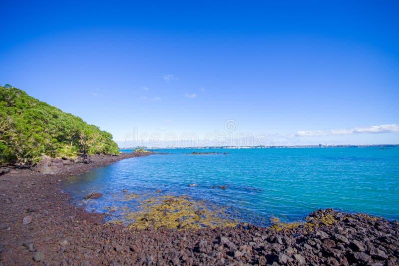 Vista bonita à ilha de Rangitoto da praia Auckland Nova Zelândia da baía de Karaka em um céu azul no dia ensolarado foto de stock royalty free