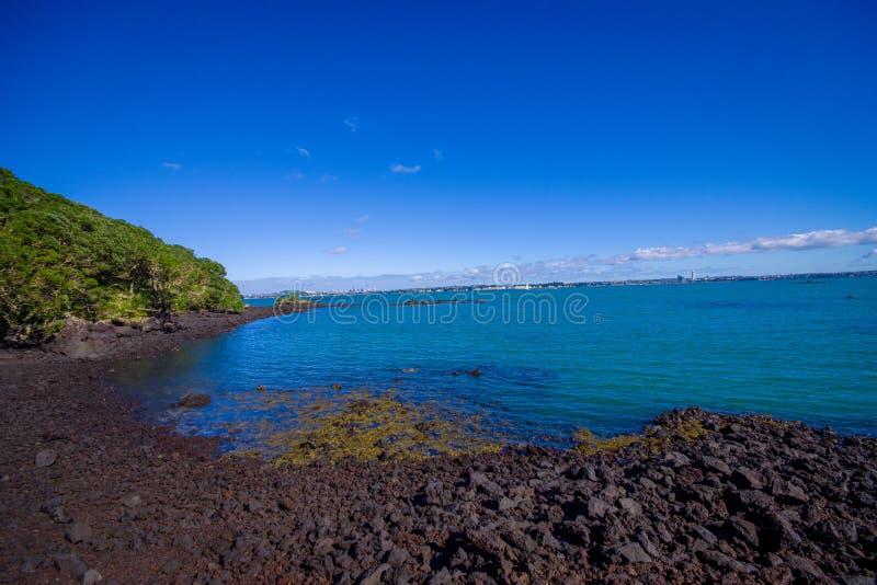 Vista bonita à ilha de Rangitoto da praia Auckland Nova Zelândia da baía de Karaka em um céu azul no dia ensolarado fotografia de stock