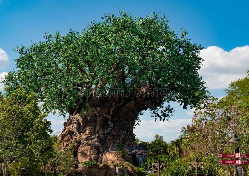 Vista bonita da árvore de vida no reino animal na área 3 de Walt Disney World foto de stock