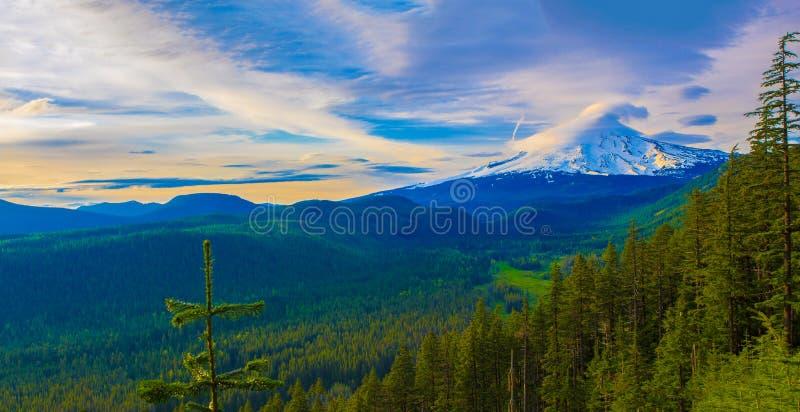 Vista bonita da capa da montagem em Oregon, EUA. imagem de stock royalty free